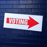 voting0201s