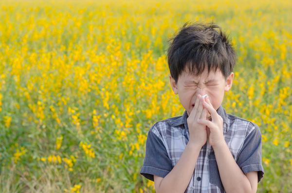 (第九回・週一更新)アトピー性皮膚炎、気管支喘息、花粉症…知っておきたい、アレルギーの仕組みの画像1