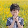 boy has allergies from flower pollen