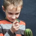little boy set down his houseplant cactus