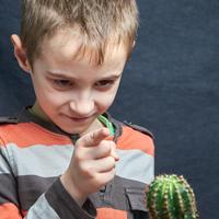little boy set down his houseplant cactus