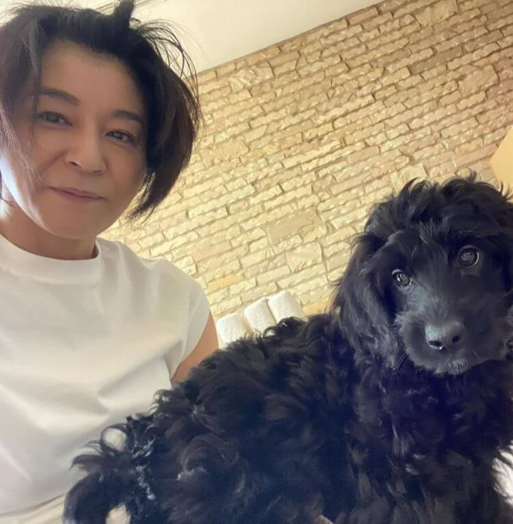 高嶋ちさ子が愛犬への虐待批判に猛反論 「フォロー外してください」「せっかくの1日が不愉快になります」の画像1